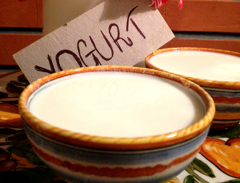 yogurt fatto in casa facile da fare con Dolci Senza Burro