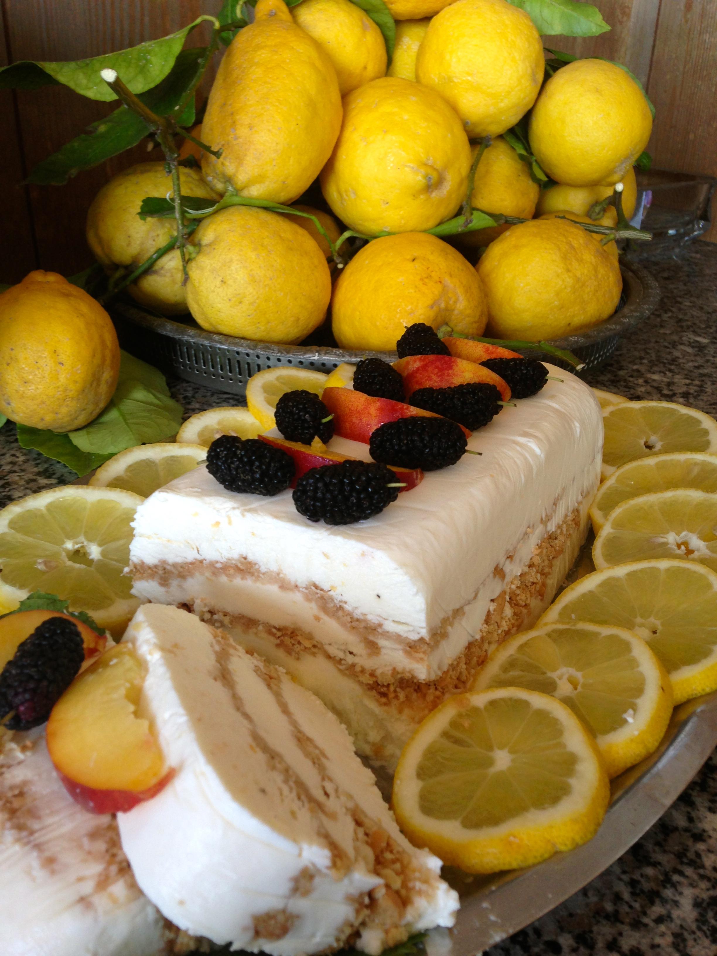 Semifreddo allo Yogurt e Frutta il dolce estivo e goloso di dolci senza burro