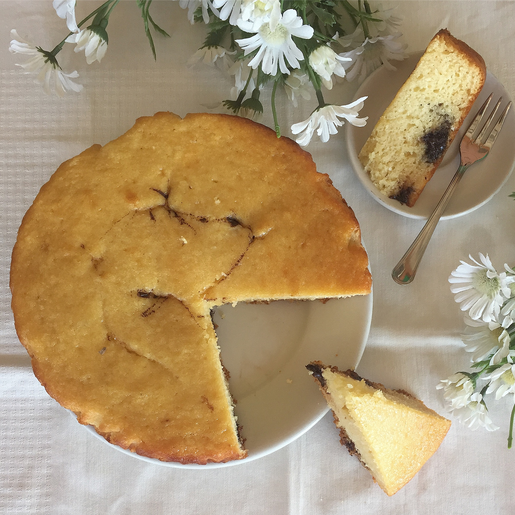 Torta al Cocco e Nutella Senza Burro, un dolce soffice morbido e goloso di dolci senza burro