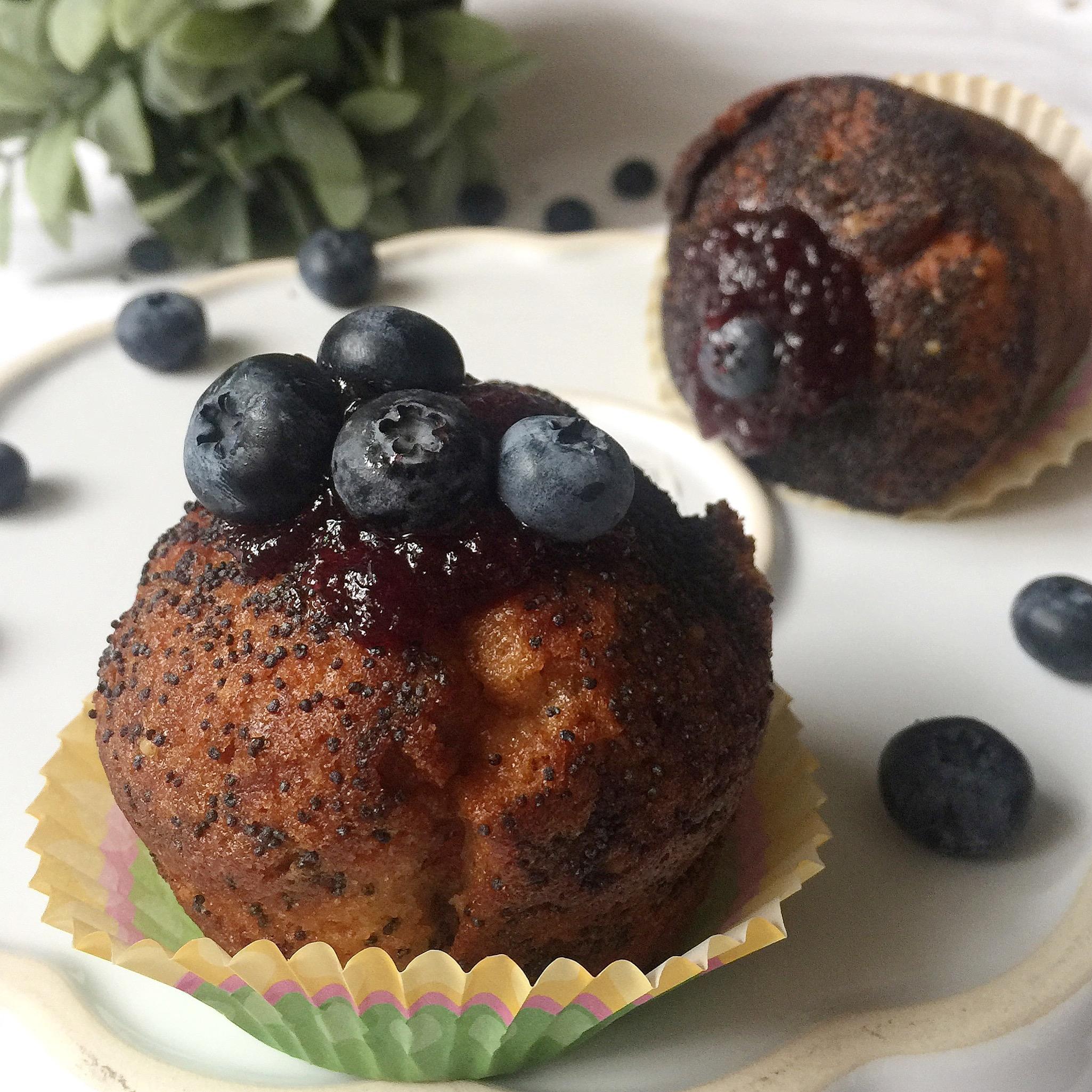 Muffin ai Semi di Papavero e Mirtilli Senza Burro, golosi e leggeri di dolci senza burro